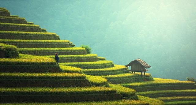Kiedy warto wybrać się do Indonezji